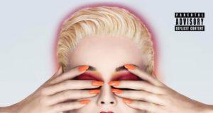 Katy Perry incidente fan