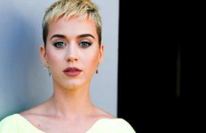 Katy Perry pausa