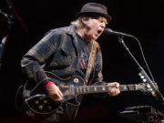Neil Young album gruppo