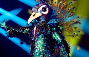 cantante mascherato milly carlucci